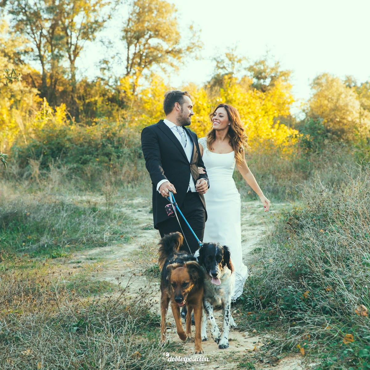 fotografos-boda-elche-alicante-reportaje-bosque-postboda-003
