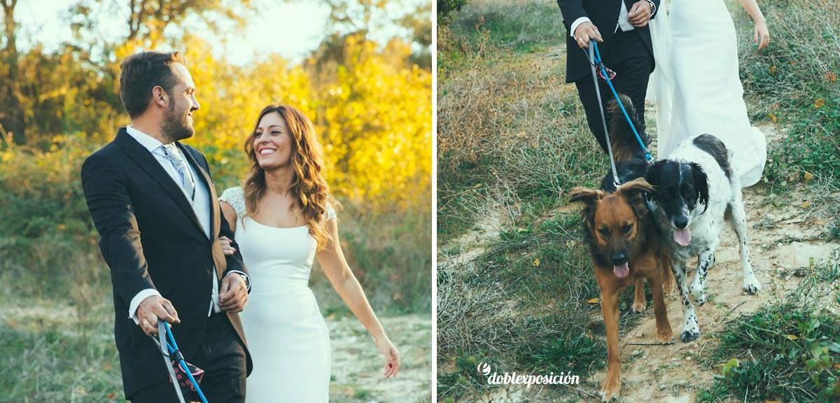 fotografos-boda-elche-alicante-reportaje-bosque-postboda-004
