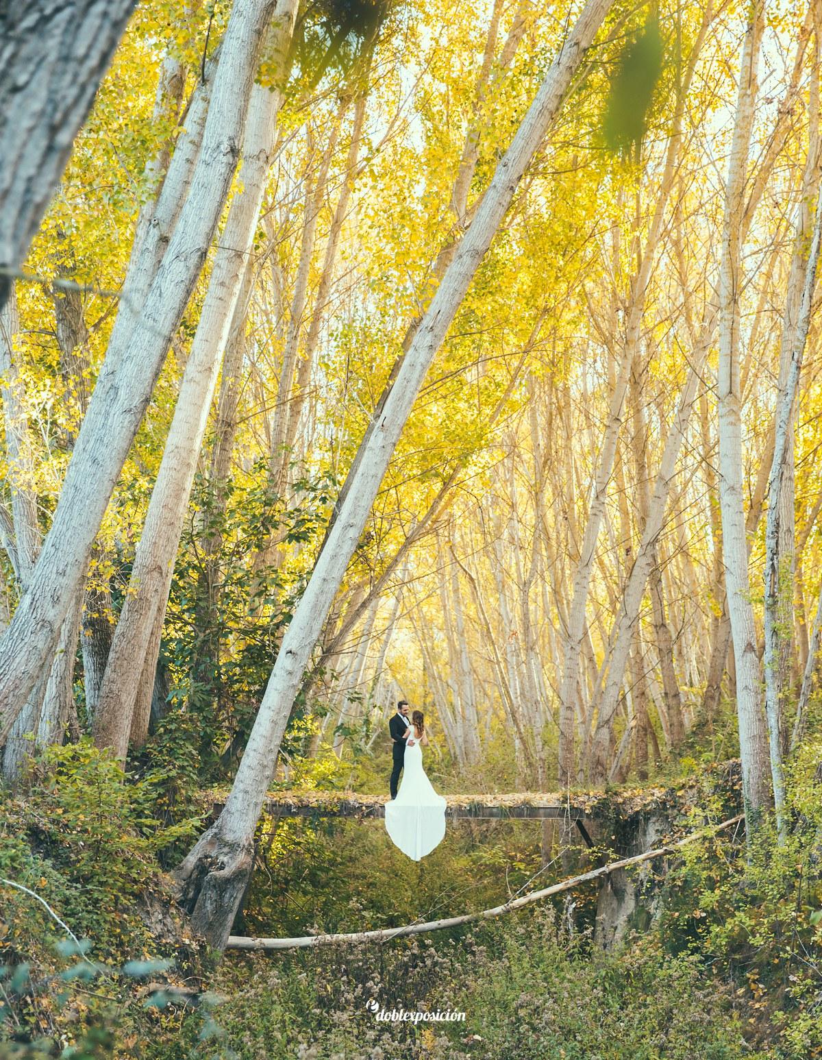 fotografos-boda-elche-alicante-reportaje-bosque-postboda-008