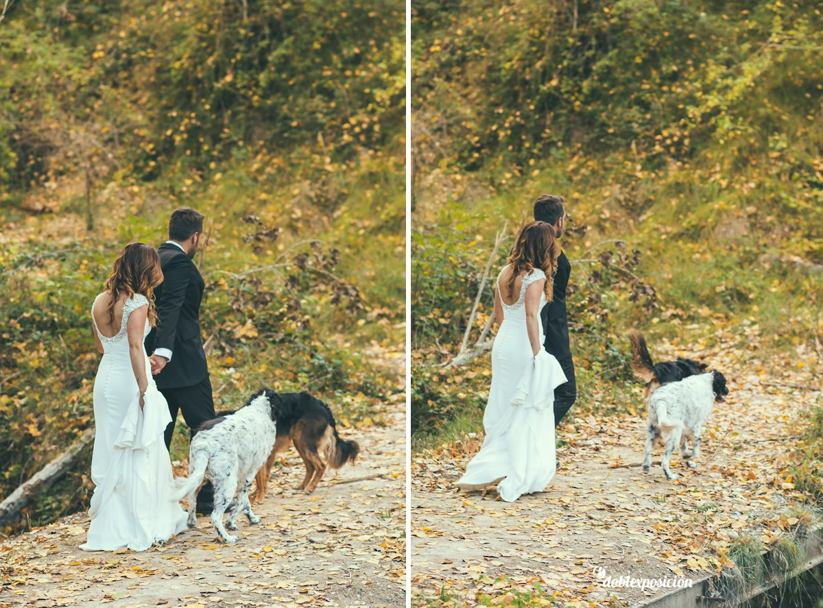fotografos-boda-elche-alicante-reportaje-bosque-postboda-013