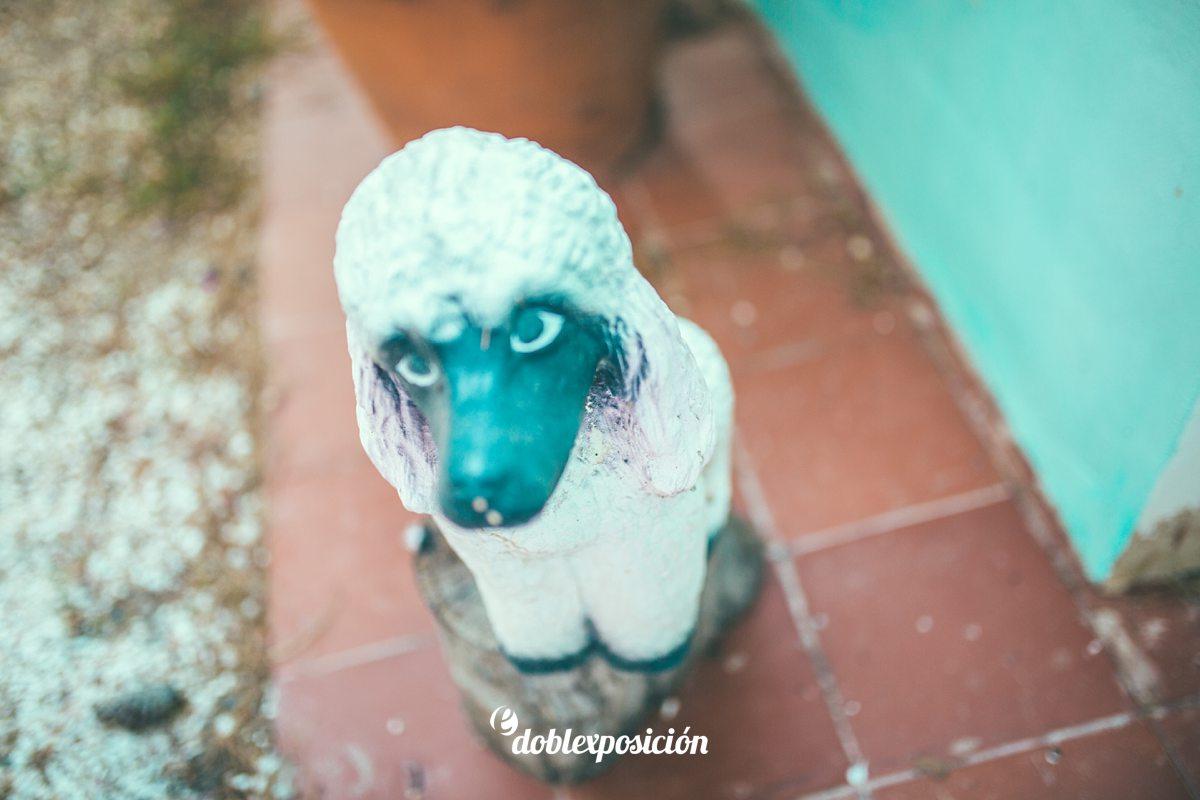 fotografos-boda-finca-el-belon-muchamiel-alicante_015