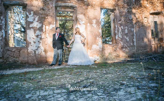 reportaje-fotografia-de-bodas-con-mascotas-13